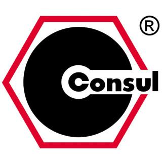 consul_logo